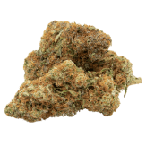 feminized cannabis bud