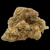 feminized cannabis bud