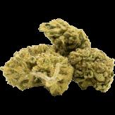 autoflowering cannabis bud